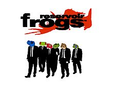Reservoir Frogs Photographic Print