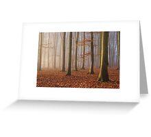 Beech Wood, Newlands Corner, Surrey Greeting Card