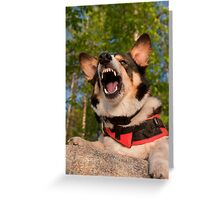 Show Me Angry Greeting Card