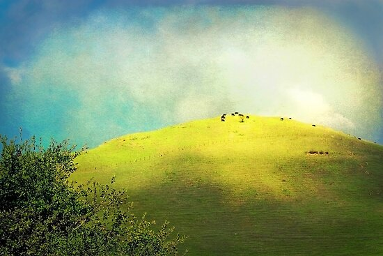 Cows on a Hill by Ellen Cotton