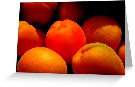 Apricots by Barnbk02