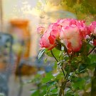 Rose by Mike  Waldron