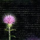 Thistle by photecstasy