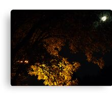 Full Moon and Street Light Canvas Print