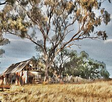 Old Shack - Photo Painting by Candice O'Neill