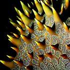 spikes by Bo Mancao