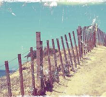 Fenceline by geophotographic