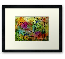 Miracle Valley Framed Print