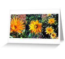 'Spring has Sprung'  Greeting Card