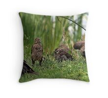 Bird Break Throw Pillow