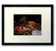 It's all in the Family Framed Print