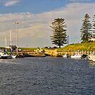 Kiarama  (Kiama Harbour) by TonyCrehan
