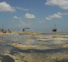 Fishing village, Zanzibar island by Konstantin Zhuravlev