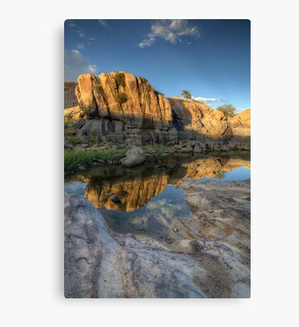 All In 2 Canvas Print