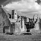 Fountains Abbey, Yorkshire by Nicholas Coates