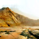 Foggy Low Tide by lucin