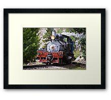 Steam Engine No. 9 (Color) Framed Print