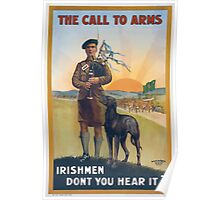 The call to arms Irishmen dont you hear it 182 Poster