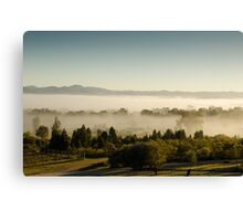 Morning Fog at Mudgee Homestead Guesthouse - Mudgee Canvas Print