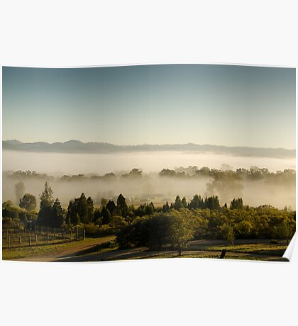 Morning Fog at Mudgee Homestead Guesthouse - Mudgee Poster
