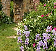 Secret Garden by Irina Chuckowree
