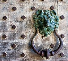 Lion Door Knocker by Irina Chuckowree