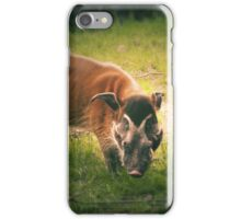 The Warthog (Lomography) iPhone Case/Skin