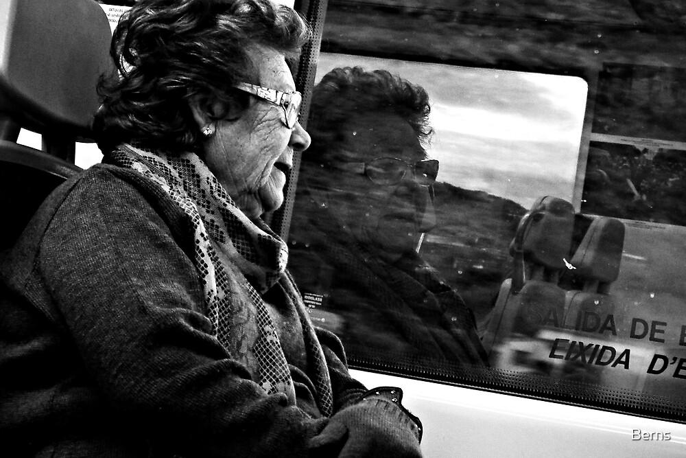 In  the Window by Berns