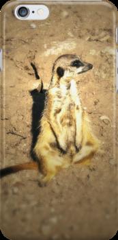 The Meerkat (Lomography) by Joel Stone