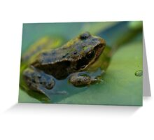 Frog! Greeting Card