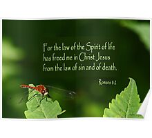 The Law that Frees ~ Romans 8:2 Poster