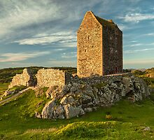 Smailholm Tower by Brian Kerr