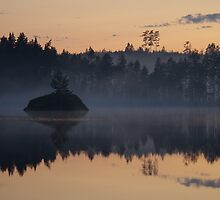 Night Mist on a Finnish Lake by seymourpics