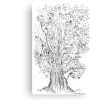 Evolutionary Tree  Canvas Print