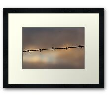 Sunset Barbs Framed Print
