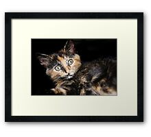 Trouble!! Framed Print