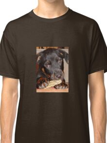 Rottweiler Puppy Chewing a Treat Classic T-Shirt
