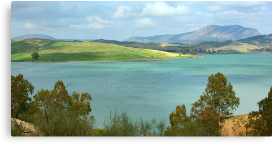 Malaga Landscape by Aase