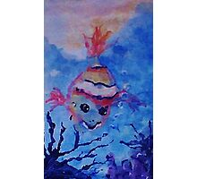 A lone little clown fish. watercolor Photographic Print