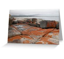 Mist and Cloud, Binalong Bay, Tasmania, Australia. Greeting Card