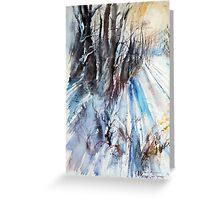 Winter Sun at the Forest Greeting Card