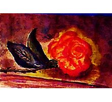 The  Rose, Gods gift, watercolor Photographic Print