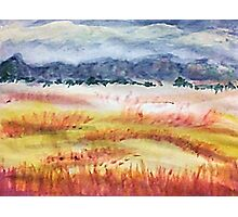 The Grasslands, watercolor Photographic Print