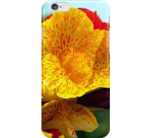 Colourful Canna Lily iPhone Case/Skin