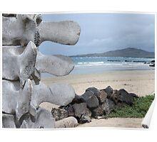 Isabela beach. Poster
