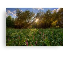 Forests and Flowers Canvas Print