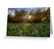 Forests and Flowers Greeting Card