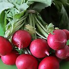 Fresh from the Farmers' Market (Radishes) by Jillian Johnston
