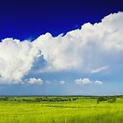 Grassland and blue sky with white clouds  by nrasic