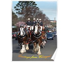 CUB Clydesdales visiting Warragul, Gippsland Poster